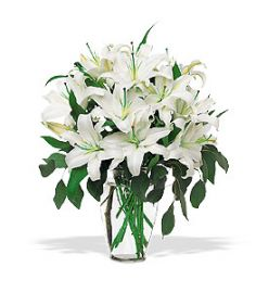 FRAGRANT WHITE LILIES Flower Vase