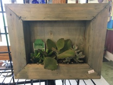 Framed Succulent Planter