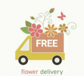 FREE DELIVERY WITHIN MT PEARL