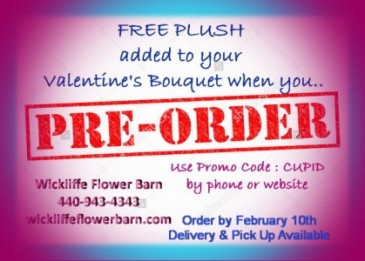 Free plush for Valentine's Bouquets Pre-Order by 12/10  Code: CUPID