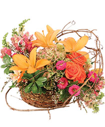Free Spirit Garden Basket Arrangement