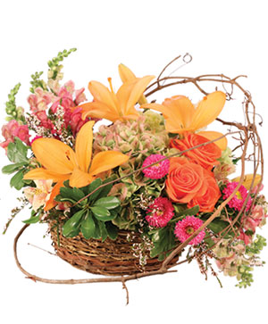 Free Spirit Garden Basket Arrangement in Peconic, NY | Country Petals and Greenport Florist