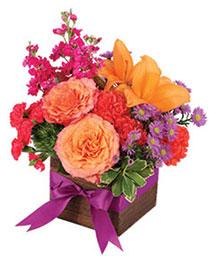 Free Spirit Lilies Flower Arrangement