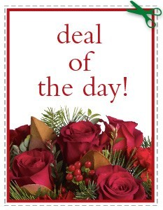 FREE UP GRADE DEAL OF THE DAY SPECIAL ONLY ONLINE!  in Cape Coral, FL | ENCHANTED FLORIST OF CAPE CORAL