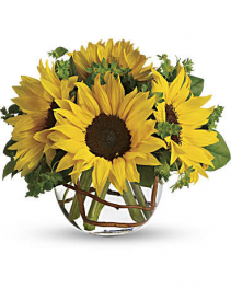 Fresh Arrangement Sunny Sunflowers
