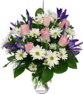 """Fresh as a Daisy"" white daisies, blue iris and  tulips (tulip color will vary depending on color in stock)"