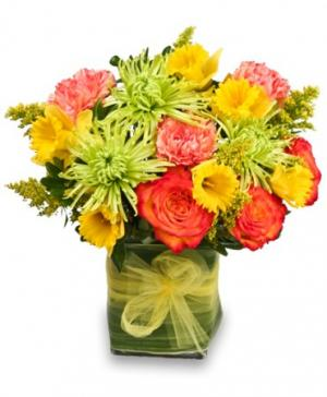 Fresh As April Spring Flowers in Solana Beach, CA | DEL MAR FLOWER CO