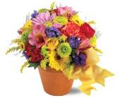 Fresh Blossom Potpourri      TF-F4 Fresh Floral Arrangement