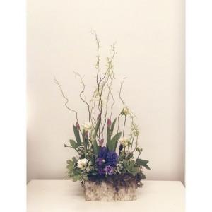 Fresh bulb flower arrangement Arrangement