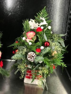 Fresh Christmas Tree  Christmas  in Trumann, AR | Blossom Events & Florist