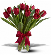 Fresh Cut Tulips Vase Arrangement