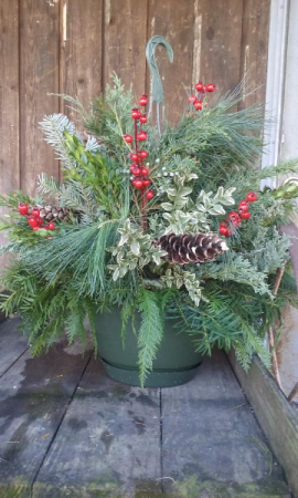 Fresh Evergreen Hanging Basket  in Valley City, OH | HILL HAVEN FLORIST & GREENHOUSE