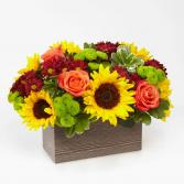 Fresh Fall Garden Wooden reusable container