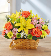 Fresh Fields of Europe Basket Arrangement
