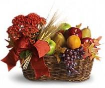 Fresh picked fruit basket