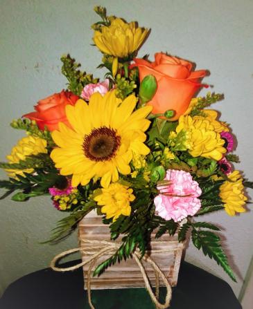 Fresh Picked Sunflower Box
