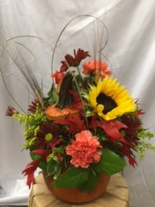 Fresh Pumpkin Arrangement fall in Danielson, CT | LILIUM