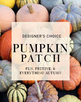Fresh Pumpkin Design Fresh Flowers
