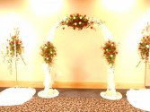 Ceremony Arch  Rental
