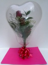 Fresh Roses in a Balloon Balloons