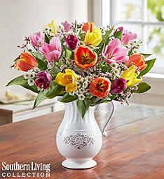 FRESH SPRING TULIP PITCHER   in Lexington, KY | FLOWERS BY ANGIE