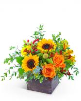 Fresh Thyme Flower Arrangement