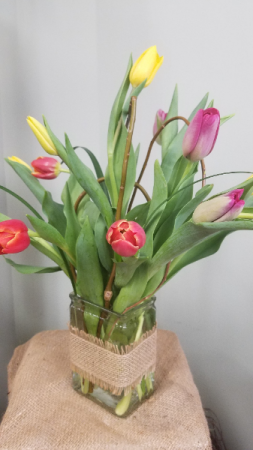 Fresh Tulips!