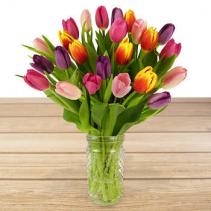 FRESH TULIPS  IN VASE  vase arrangement