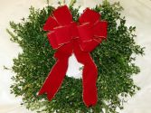 Fresh Boxwood Wreath Holiday