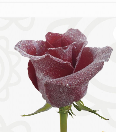 Frosted Red Roses in a Vase with Baby Breath and Greens