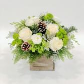 Frosty Winter Cut flowers
