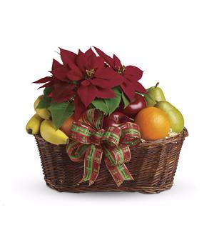 Fruit and Poinsettia Basket *24 hour notice required* in Portland, OR | Kern Park Flower Shoppe