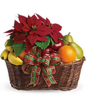 Fruit and Poinsettia Basket in Jasper, TX | BOBBIE'S BOKAY FLORIST