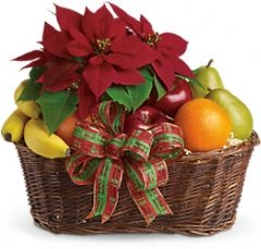 Fruit and Poinsettia Basket $55.95, $60.95, $65.95