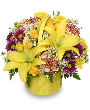 A Tisket A Tasket Sunny Flower Basket in Mount Pleasant, SC | BELVA'S FLOWER SHOP