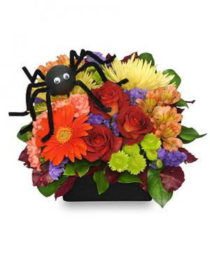 ALONG CAME A SPIDER Halloween Bouquet in Winston Salem, NC | RAE'S NORTH POINT FLORIST INC.