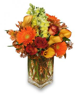 Thanksgiving usa flowers coral springs fl hearts flowers of autumn adventure arrangement in coral springs fl hearts flowers of coral springs mightylinksfo