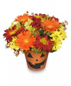 Bloomin' Jack-O-Lantern Halloween Flowers in Ganado, TX | The Holiday House Florist