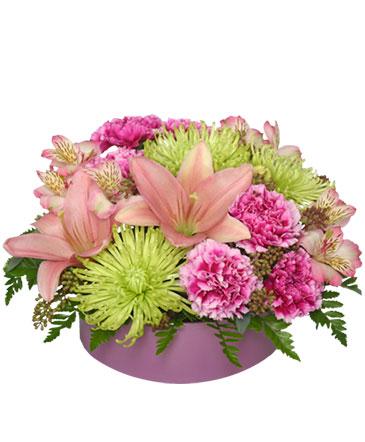 Pink Sherbert Floral Arrangement