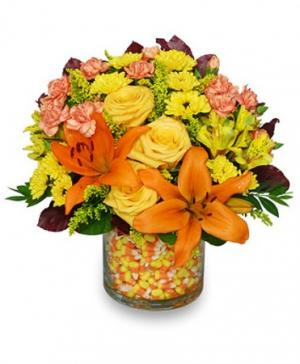 Candy Corn Halloween Bouquet in Carmel, IN | LOVE AT FIRST SIGHT FLORAL & DESIGN