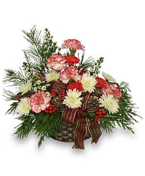 CHRISTMAS TRADITIONS Basket Arrangement in Edgerton, WI | EDGERTON FLORAL & GARDEN CENTER