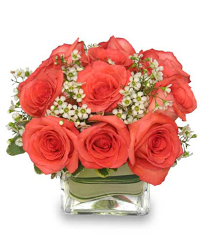 Coral Pink Perfection Bouquet in Coral Springs, FL | DARBY'S FLORIST