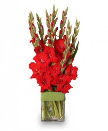 Glad Youre My Dad Gladiolus Vase In Hillsboro Or Flowers By
