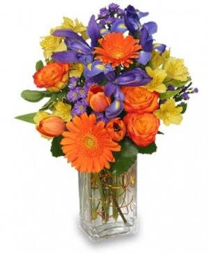 Happiness Grows Arrangement in Kelowna, BC | BLOOMERS FLORAL DESIGNS & GIFTS