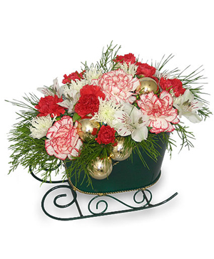 HOLIDAY SLEIGH Bouquet in Canton, GA | Canton Florist