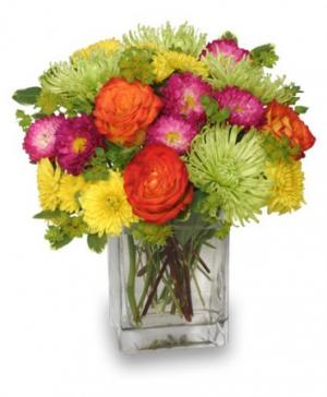 Neon Splash Bouquet in De Leon, TX | PRICE'S FLOWERS