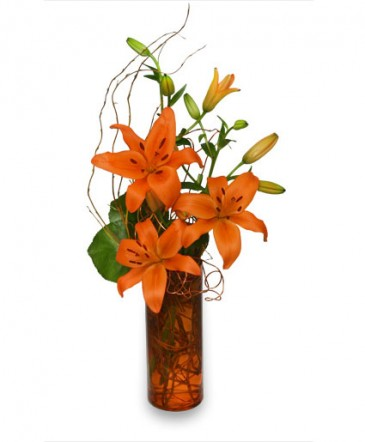 ORANGE YOU GREAT Flower Arrangement