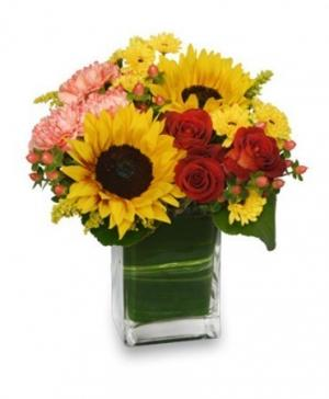 Season For Sunflowers Floral Arrangement in Aliso Viejo, CA | Lily Fiore Floral Boutique