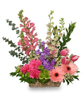 SPRING RETURNS! Floral Arrangement