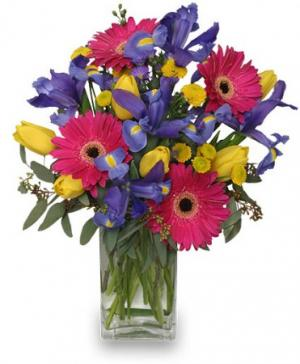 Spring Smiles Arrangement in Utica, MI | A SPECIAL TOUCH FLORIST INC.